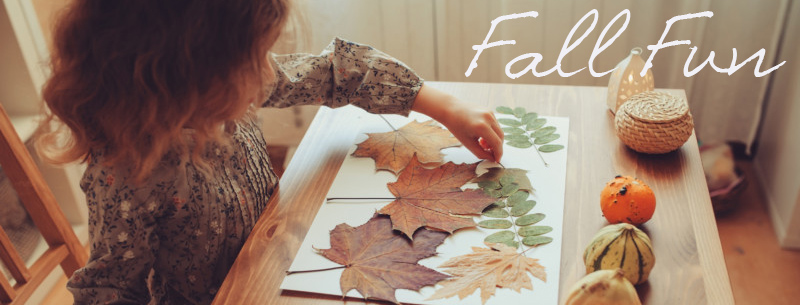 Fall Fun at GingerBean